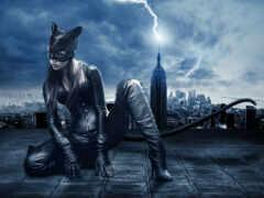 женщина, кот, винилография