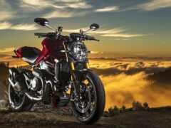 мотоцикл, ducatus, monster