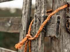 веревка, забор, повязка