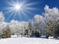 winter, пейзажи