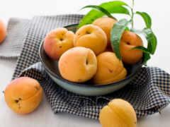 абрикос, табличка, благо