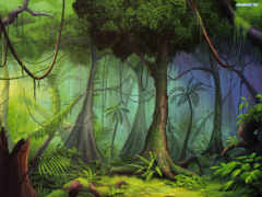 jungle, африки, занзибар