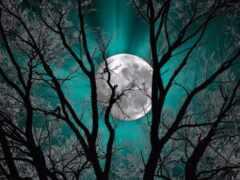луна, teal, стена