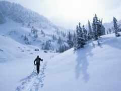 country, кросс, ski