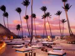 пальмы, туры, iphone