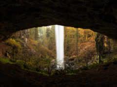 пещера, лес, водопад