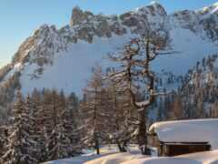 гора, альпы, austrian