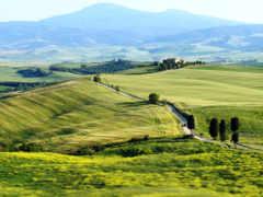 tuscany, italian, italy