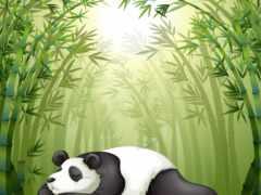fore, бамбук, вектор