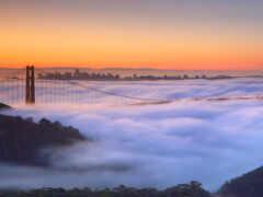 золотистый, gate, мост