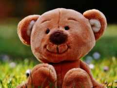 плюшевый, медведь, toy
