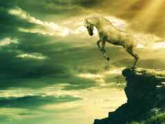 лошадь, arabic, собака