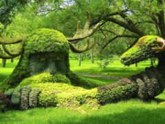 garden, botanical, sculpture