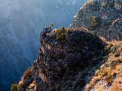 дагестан, горы, дагестана