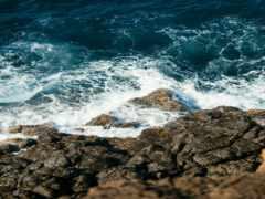 free ocean, море