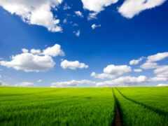 природа, небо, поле