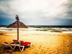 tropical, пляж, landscape