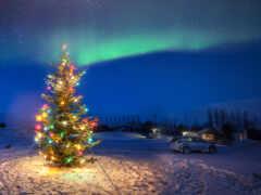 christmas, iceland, год