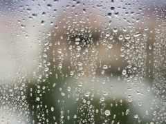 дождя, после, капли