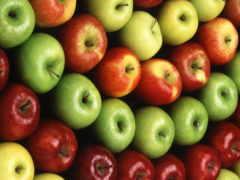 сорта, яблонь, яблони