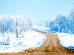 business, фоны, снег