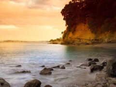 пляж, море, природа