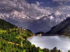 природа, панорама, лес