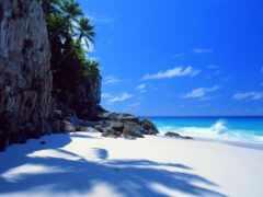 остров, fond, сейшел