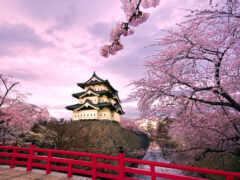 japanese, castle, rook