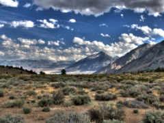 трава, облака Фон № 9240 разрешение 1920x1200