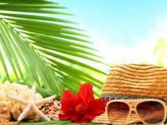 море, palm, шляпа