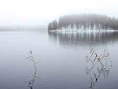 река, landscape, туман