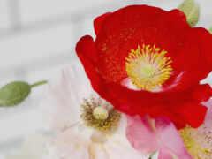 цветы, искусственный, гербера