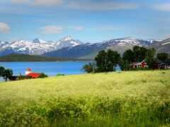 норвегия, поле, гора