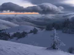 winter, крымский