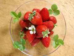 плод, seedless, запах