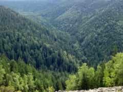 горы, регистрации, растительность