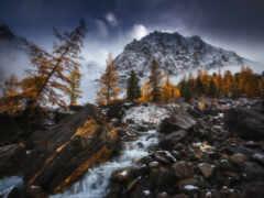 река, ручей, туман