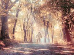 лесной, природа