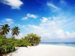 пляж, maldives