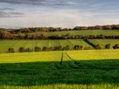 cool, scenic, farming