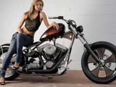 harley, мотоцикл, davidson