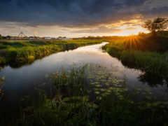 tidal, marsh
