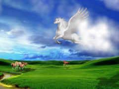 white, лошадь, небо