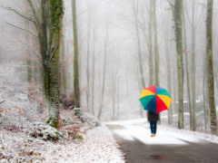winter, осень, переход