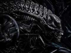 alien, ксеноморф, чужое