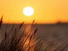 sun, пост