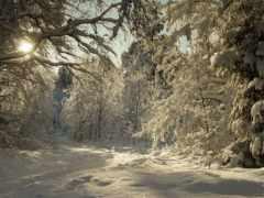 montañas, явления, зимние