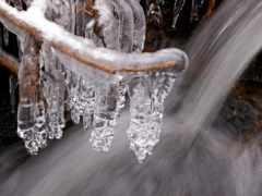 free, vinter, лед