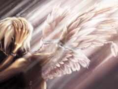 angel, herido, aime